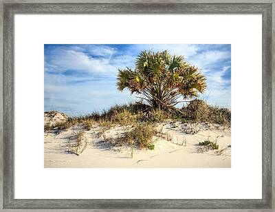 Meanwhile Somewhere In Florida Framed Print