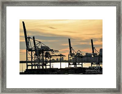 Mechanical Arms In Morning Light Framed Print by Gary Smith