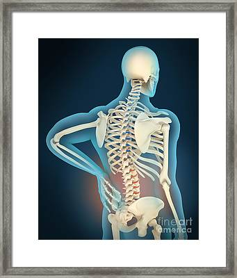 Medical Illustration Showing Framed Print by Stocktrek Images