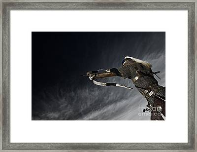 Medieval Knight With Bow And Arrow Framed Print