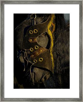 Medieval Stallion Framed Print by Wes and Dotty Weber