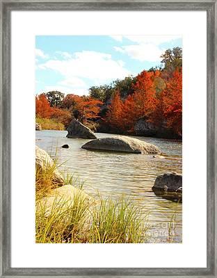 Fall Cypress At Bandera Falls On The Medina River Framed Print