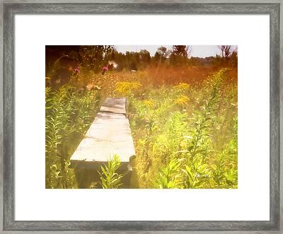Meditation In Sunlight 1 Framed Print by The Art of Marsha Charlebois