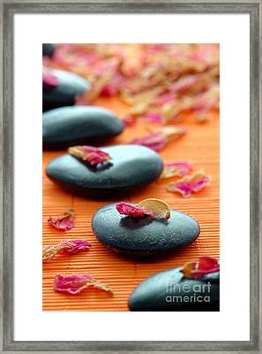Meditation Zen Path Framed Print by Olivier Le Queinec
