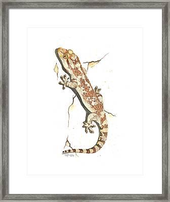 Mediterranean House Gecko Framed Print