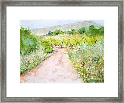 Medjugorje Path To Apparition Hill Framed Print by Vicki  Housel