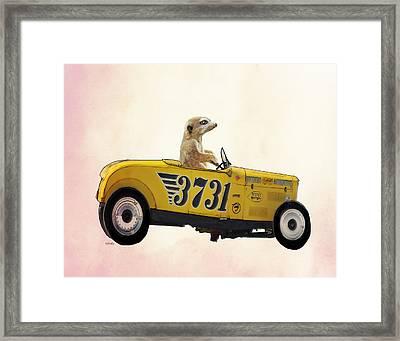 Meerkat And Hot Rod Framed Print