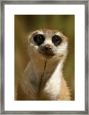 Meerkat Guardian Framed Print