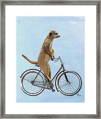 Meerkat On A Bicycle Framed Print