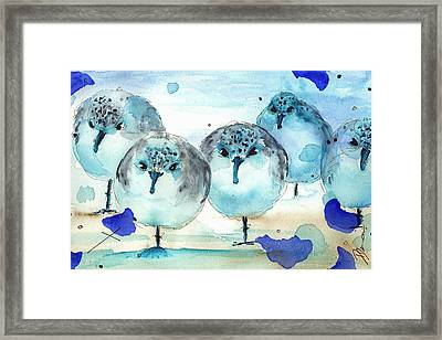 Meet The Sanderlings Framed Print by Dawn Derman