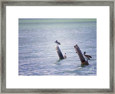 Framed Print featuring the photograph Meeting Place by Erika Weber