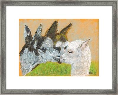 Meeting Uncle Al Framed Print by Carol Wisniewski