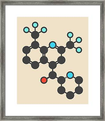 Mefloquine Malaria Drug Molecule Framed Print