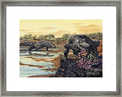 Megalania Giant Monitor Lizard Eating Framed Print by Mark Hallett