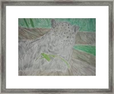 Melanistic Jaguar Drawing On Paper Framed Print by William Sahir House