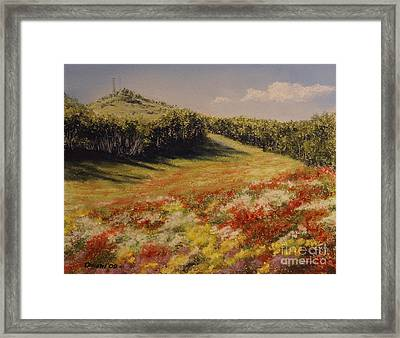 Melkow Trail  Framed Print