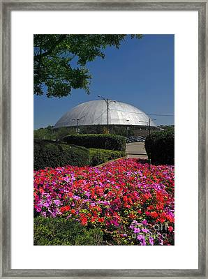 Mellon Arena Framed Print by Amy Cicconi