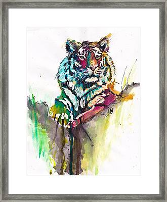 Mellow Kitty Framed Print