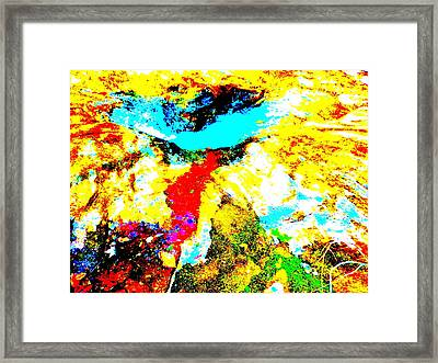 Mellow Yellow 42 Framed Print by George Ramos