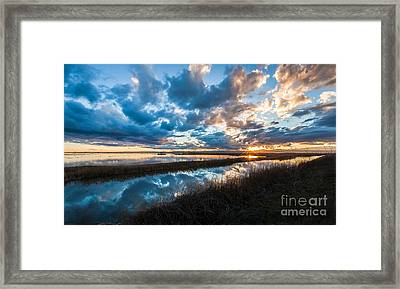 Melodic Moment Framed Print