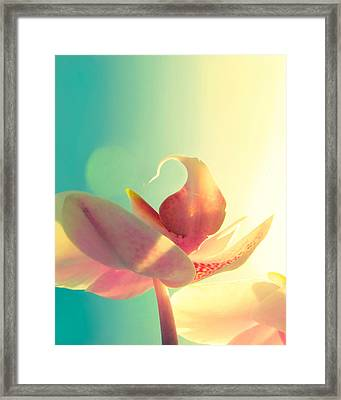 Melody Framed Print by Amy Tyler