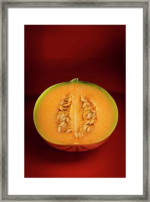Melon Framed Print