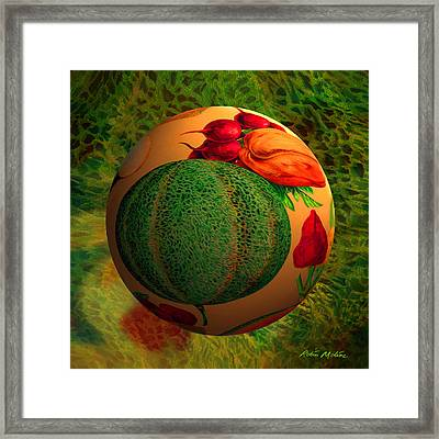 Melon Ball  Framed Print by Robin Moline