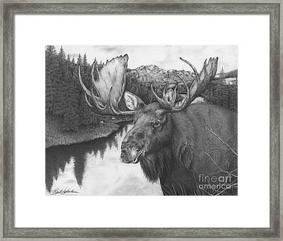 Melozi River Moose Framed Print