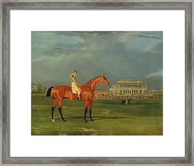 Memnon, With William Scott Up Memnon With William Scott Framed Print