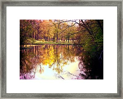 Memorial Park - Henry County Framed Print