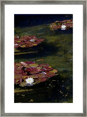 Memories Of Monet Framed Print by Marilyn Wilson
