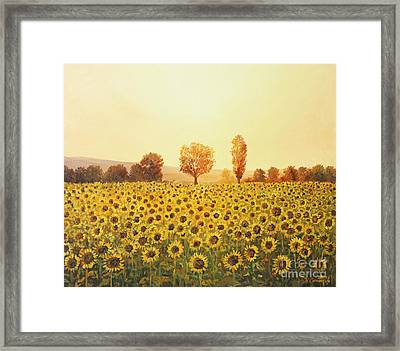 Memories Of The Summer Framed Print by Kiril Stanchev