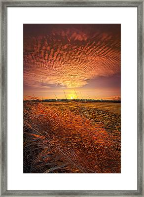Memories Of Whispered Thoughts Framed Print by Phil Koch