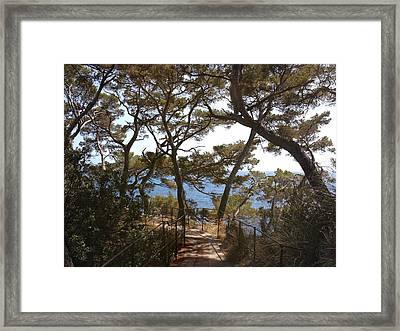 Memory Lane.. Framed Print