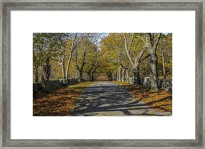 Framed Print featuring the photograph Memory Lane by Glenn DiPaola