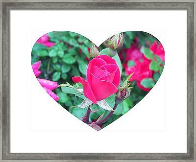 Memory Of A Mother's Love  Framed Print by Pamela Hyde Wilson