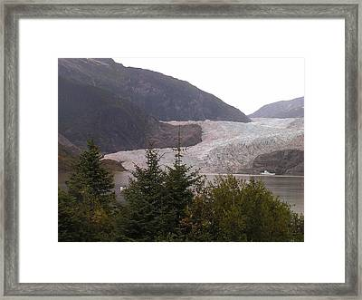 Mendenhall Glacier From The Path. Framed Print