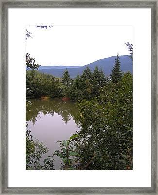 Mendenhall Pond Framed Print