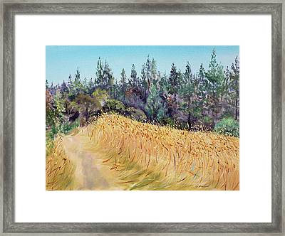 Mendocino High Grass Meadow At Susan's Place In July Framed Print by Asha Carolyn Young