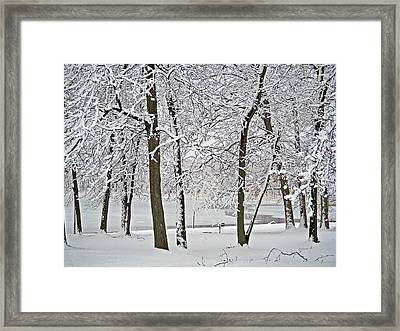 Mendon Ponds Framed Print by Aimee L Maher Photography and Art Visit ALMGallerydotcom