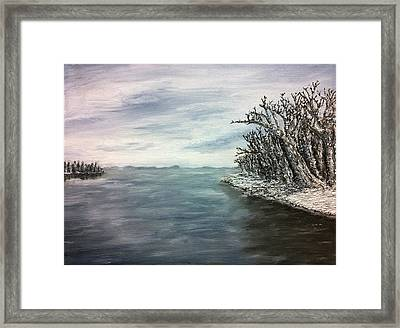 Mendota In Gray Framed Print by Evan Maltz