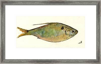 Menhaden Fish Framed Print by Juan  Bosco