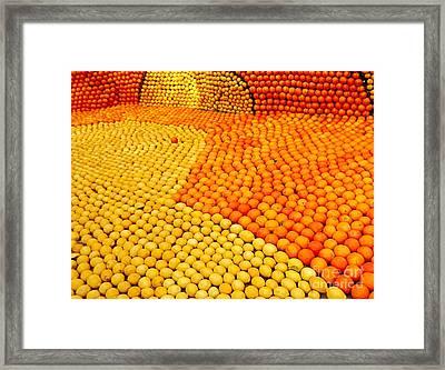Menton Citrus Festival Framed Print by France  Art