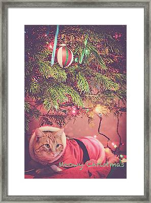 Meowy Christmas Framed Print by Melanie Lankford Photography