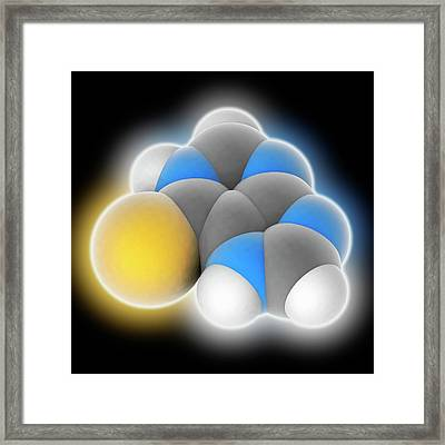 Mercaptopurine Drug Molecule Framed Print by Laguna Design