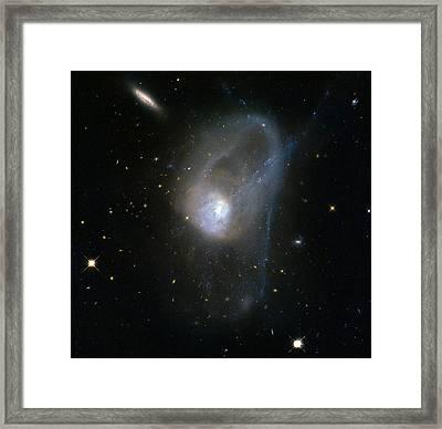Merging Galaxies Ngc 3921 Framed Print by Science Source