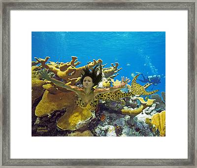 Mermaid Camoflauge Framed Print by Paula Porterfield-Izzo