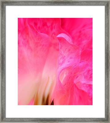Framed Print featuring the photograph Mermaid In Love by The Art Of Marilyn Ridoutt-Greene