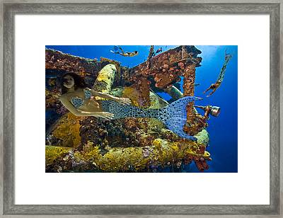 Mermaid Oblivion Framed Print by Paula Porterfield-Izzo