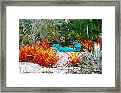 Framed Print featuring the photograph Mermaids Leisure Garden by Joan McArthur